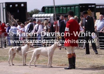 IMG_2055South Devon