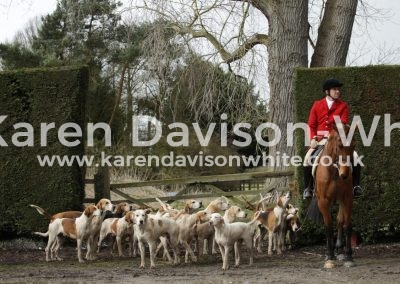 IMG_3146South Wold foxhounds