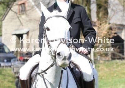 IMG_3696Fitz whip karendavisonwhite