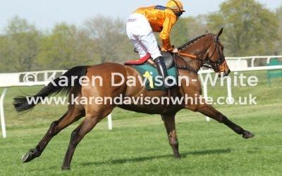 Fakenham Races 22.4.19