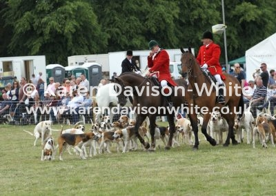 IMG_5876Dunston Harriers and Suffolk Foxhounds