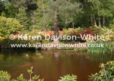 img_6390water-garden-stody