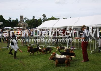 IMG_7461De Burgh and North Essex Harehounds