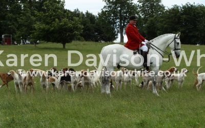Euston Rural Pastimes 11.6.2017 Take two
