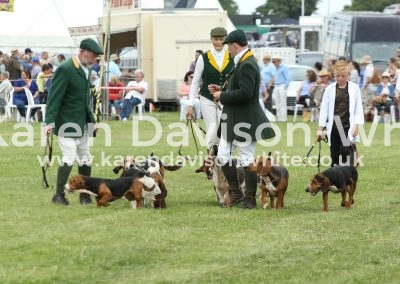 IMG_8206De Burgh and North Essex Harehounds
