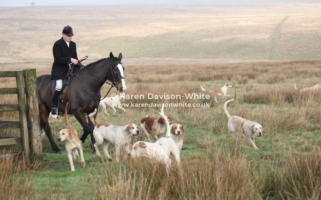 Exmoor Foxhounds 17.12.18 part one.