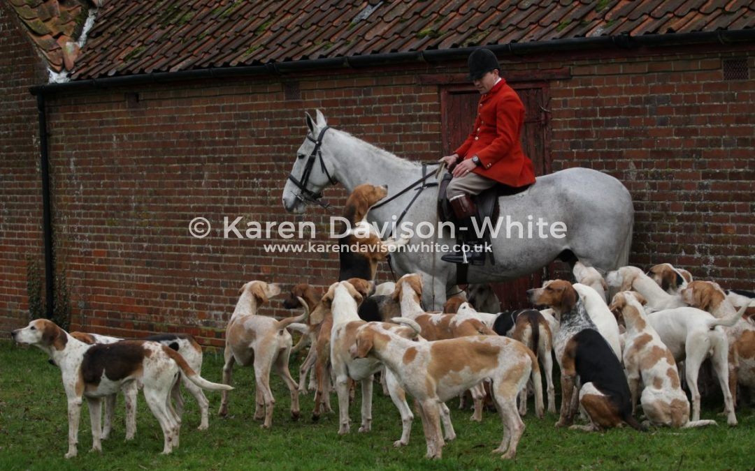 west norfolk foxhounds meet cardio